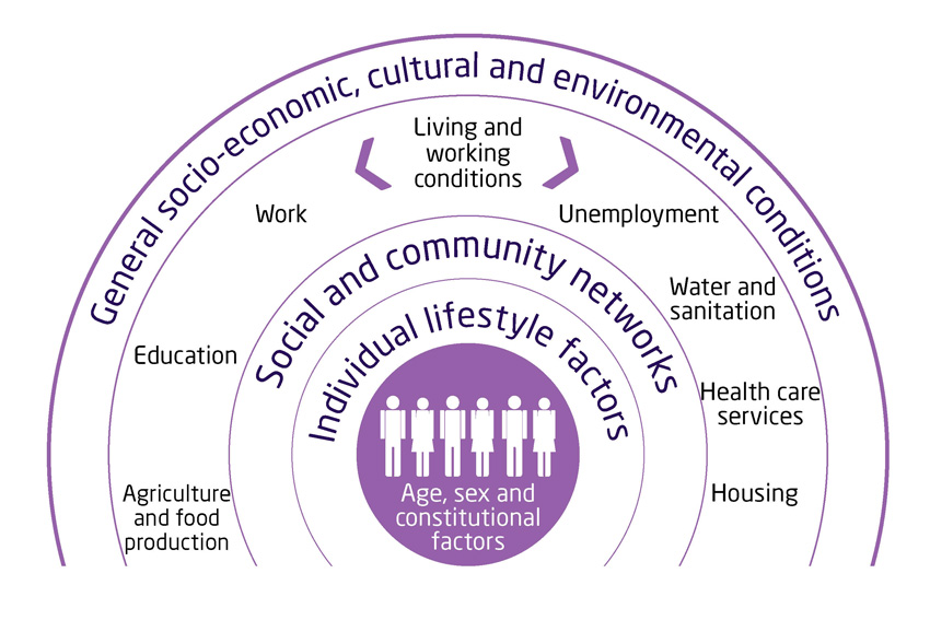 social determinants of health essay Social determinants of health such as housing and income have a large impact on mental health the authors describe community based initiatives that address access to.