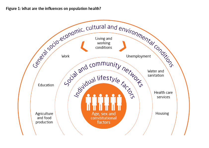 Figure 1: What are the influences on population health?