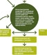 South Devon and Torbay care planning process
