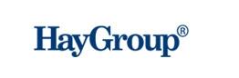 HayGroup logo