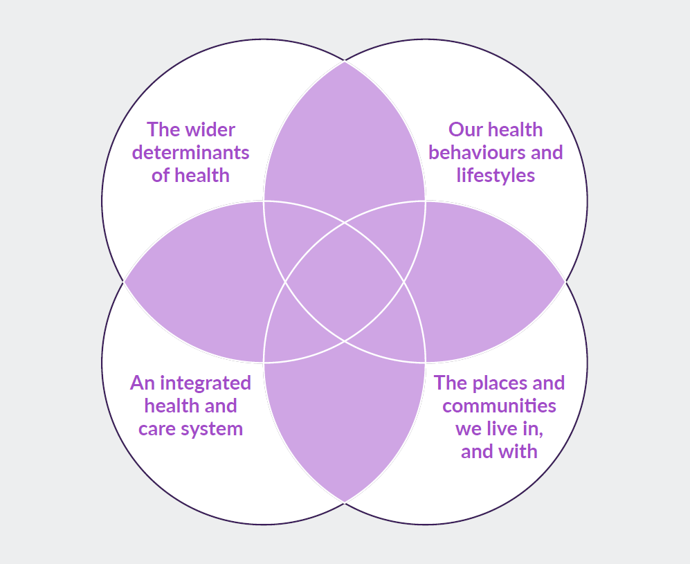 Figure 2: a population health system