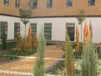Using the garden helps patients regain mobility