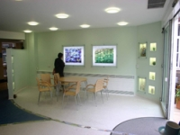 A social space looks out onto the garden