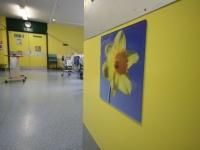 Bright colours and pretty artwork decorate the ward