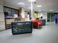 The ward area is now more calm for service users