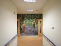 Beautiful murals decorate the corridors